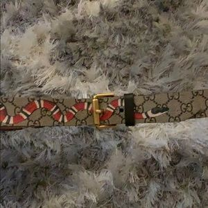 King Snake Gucci Belt